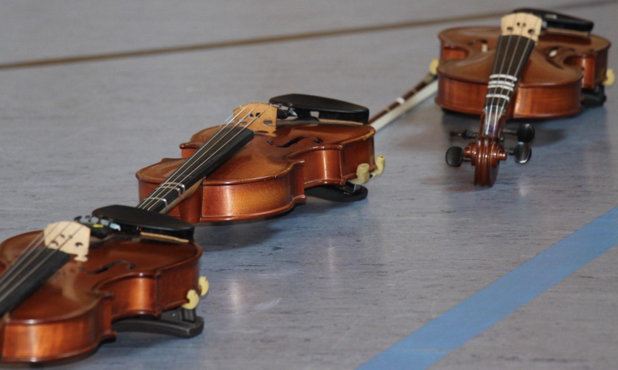 Suzuki Musikkreis